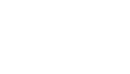 Dell white logo